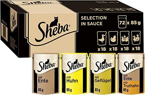 Sheba Selection...
